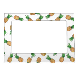 12.7 cm X 17.8 cm Magnetic Frame Pineapple