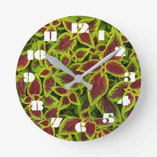12 Number Choices to Choose From Coleus Clock