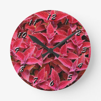 12 Number Choices to Choose From Red Coleus Clock