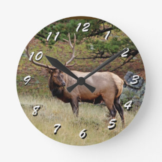 12 Number Choices to Choose --Wild Elk Clock