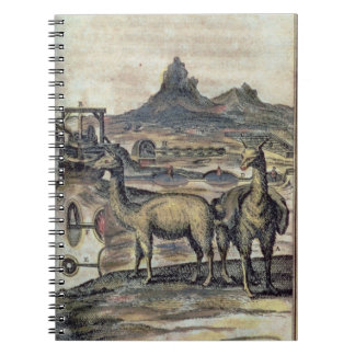 137-0627924 Illustration from a history of Peru sh Notebook