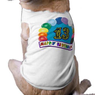 13th Birthday Gifts with Assorted Balloons Design Shirt