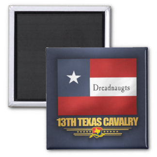 13th Texas Cavalry (v10) Magnet