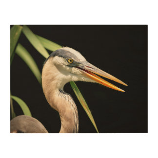 14x11 Great Blue Heron Wood Wall Art