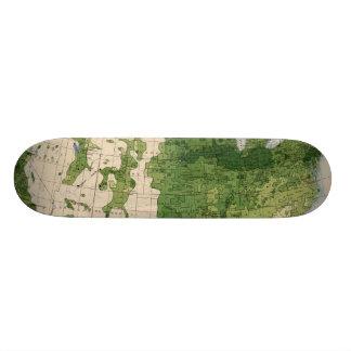 155 Corn/acre Skateboards