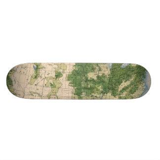 156 Wheat/sq mile Skate Deck