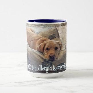 15oz Allergic to Mornings Mug