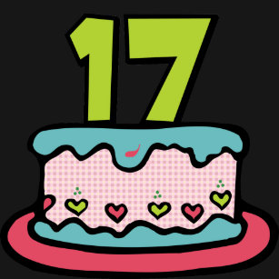 17 Year Old Birthday Cake T Shirt
