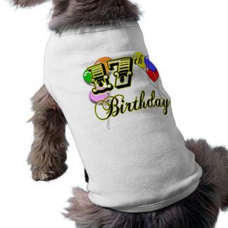 17th Birthday Shirt