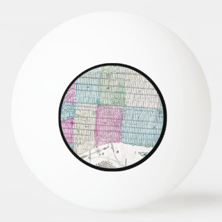 1870 Map New York City Central Park Ping Pong Ball