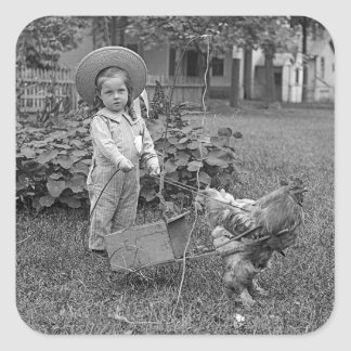 1880's Adorable Girl and Rooster Cart in Garden Square Sticker