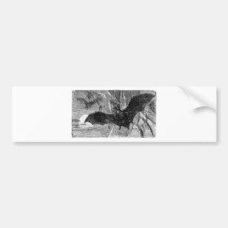 1885 Vampire Bat Illustration Bumper Sticker