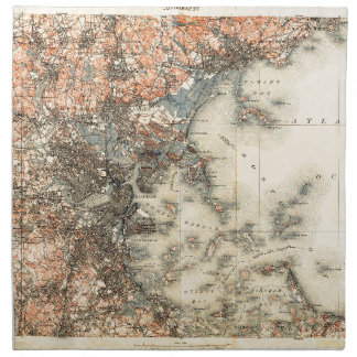 1898 Topographical Map of Boston Massachusetts Napkin