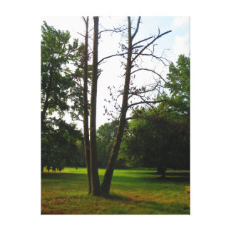 """18"""" x 24"""" Wrapped Canvas Stand alone Standout Tree"""