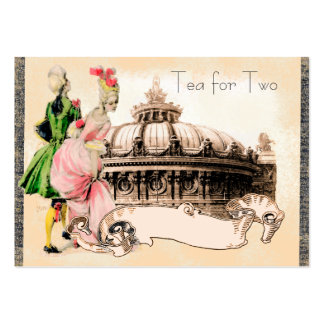 18th Century Couple with the Paris Opera House Pack Of Chubby Business Cards