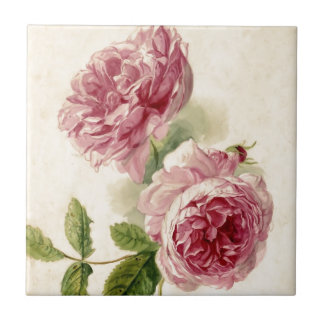 18th Century Pink Rose Study Ceramic Tile