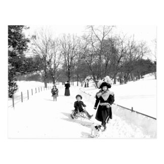 1900 Central Park NYC Postcard