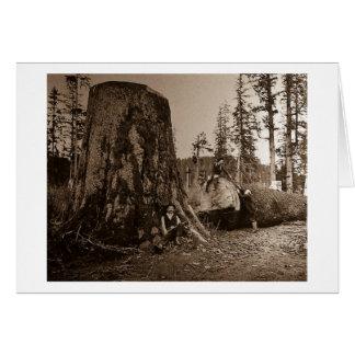 1903 Vintage Lumberjacks Magic Lantern Slide Greeting Card