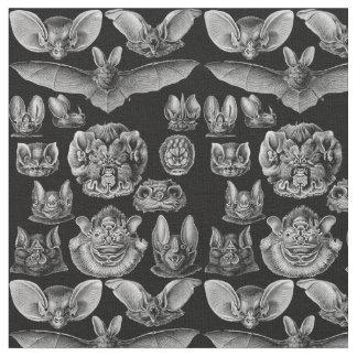 1904 Haeckel Chiroptera Fabric