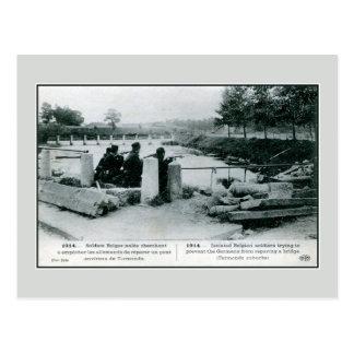 1914 Belgian soldiers in defense near Termonde Postcard