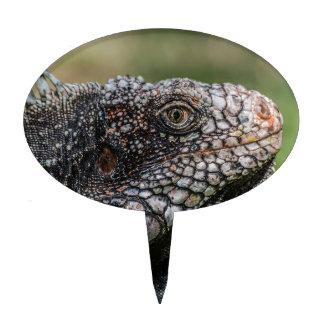 1920px-Iguanidae_head_from_Venezuela Cake Topper