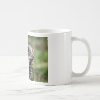 1920px-Iguanidae_head_from_Venezuela Coffee Mug