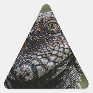1920px-Iguanidae_head_from_Venezuela Triangle Sticker