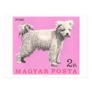 1967 Hungary Pumi Dog Postage Stamp Postcard