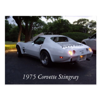 1975 Corvette Postcard