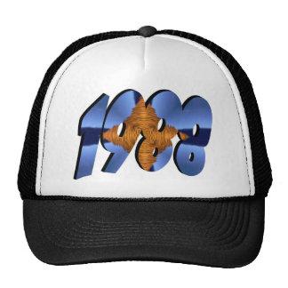 1988 CAP