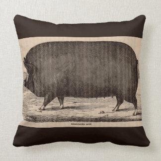 19th century farm animal print Berkshire sow pig Cushion