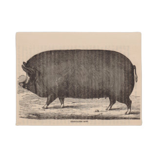 19th century farm animal print Berkshire sow pig Doormat