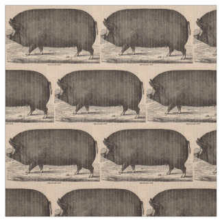19th century farm animal print Berkshire sow pig Fabric