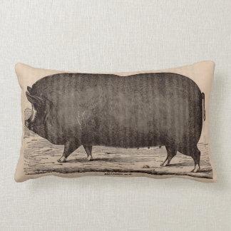 19th century farm animal print Berkshire sow pig Lumbar Cushion