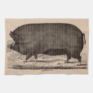 19th century farm animal print Berkshire sow pig Tea Towel