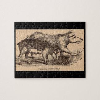 19th century farm animal print pigs jigsaw puzzle
