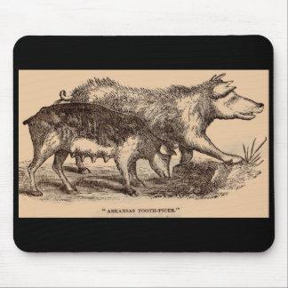 19th century farm animal print pigs print mouse pad