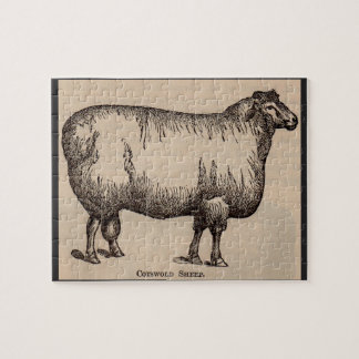 19th century print Cotswold sheep Jigsaw Puzzle