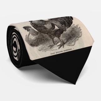 19th century print grey English dorkings chickens Tie