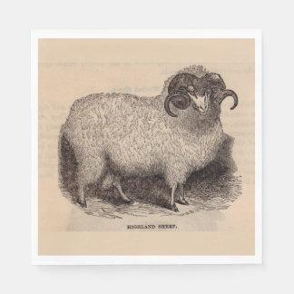 19th century print Highland sheep Disposable Serviettes