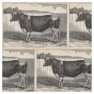 19th century print Holstein bull Fabric