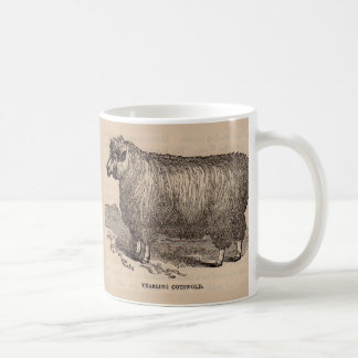 19th century print yearling Cotswold sheep Coffee Mug