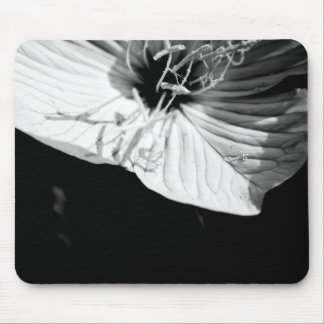 1/2 Conversation - Floral Photograhy Mouse Pad
