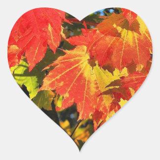 """1.5"""" Vibrant vine maple in fall heart sticker"""