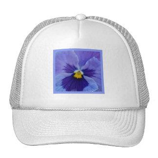 1 Blue Beauty Pansy Trucker Hats