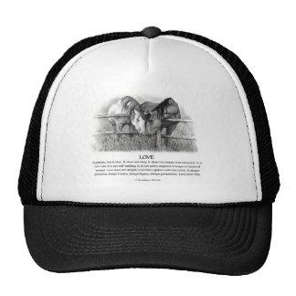1 Corinthians 13: Love, Horses in Pencil Trucker Hat