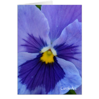 1 Pansy Blue Beauty Note Card
