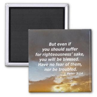 1 Peter 3:14 Magnet