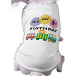 1st Birthday Train Birthday Pet Tshirt