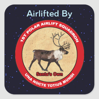 1st Polar Airlift Squadron Special Delivery Square Sticker